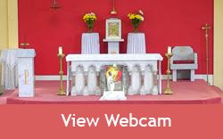 View webcam